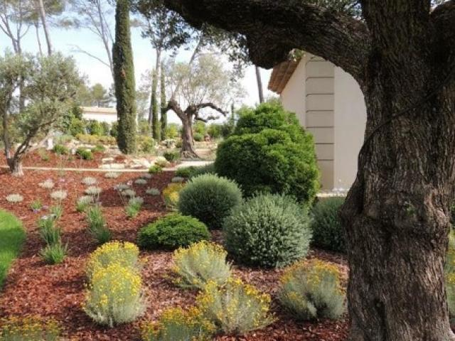 Aménagement d'un jardin provencal